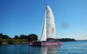 1/2 journée visite du Golfe du Morbihan-14
